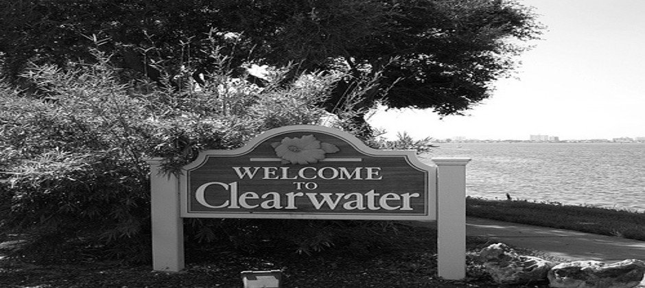 Clearwater SEO